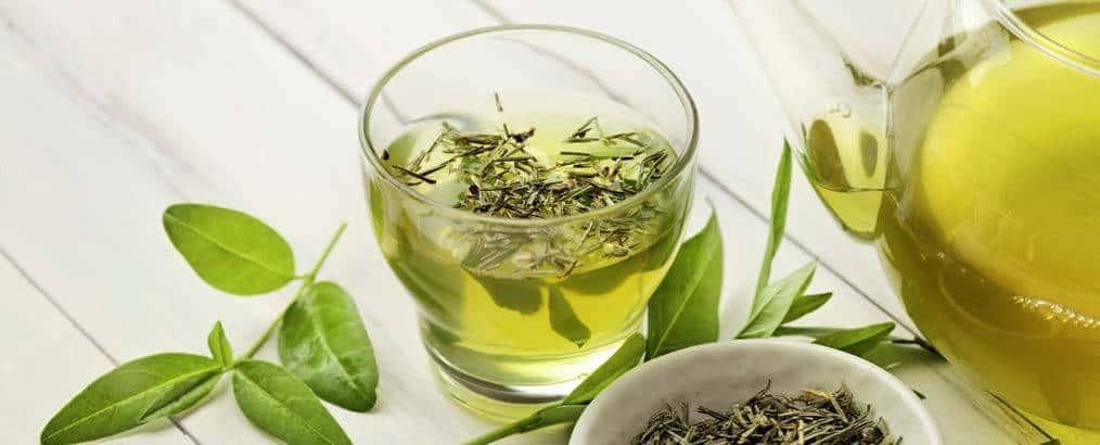Thee, boordevol antioxidanten