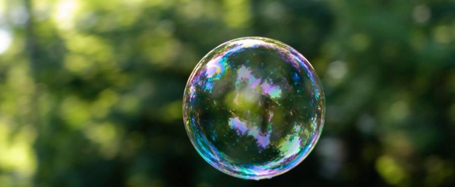 De holistische bubbel